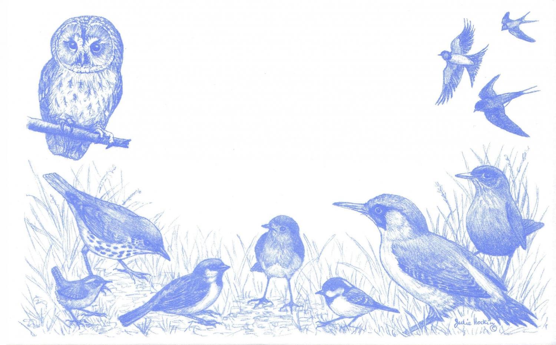 Recycling Set - Garden Birds
