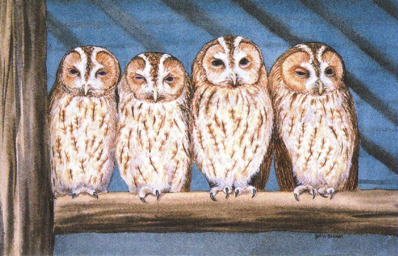 Rectangular Fridge Magnet - Rescue Owls