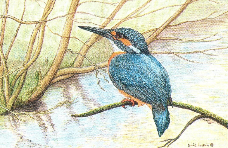 Rectangular Fridge Magnet - Kingfisher