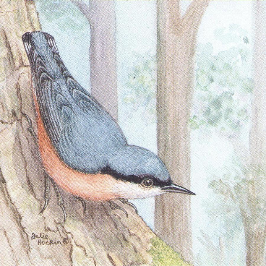 Square Fridge Magnet - Nuthatch