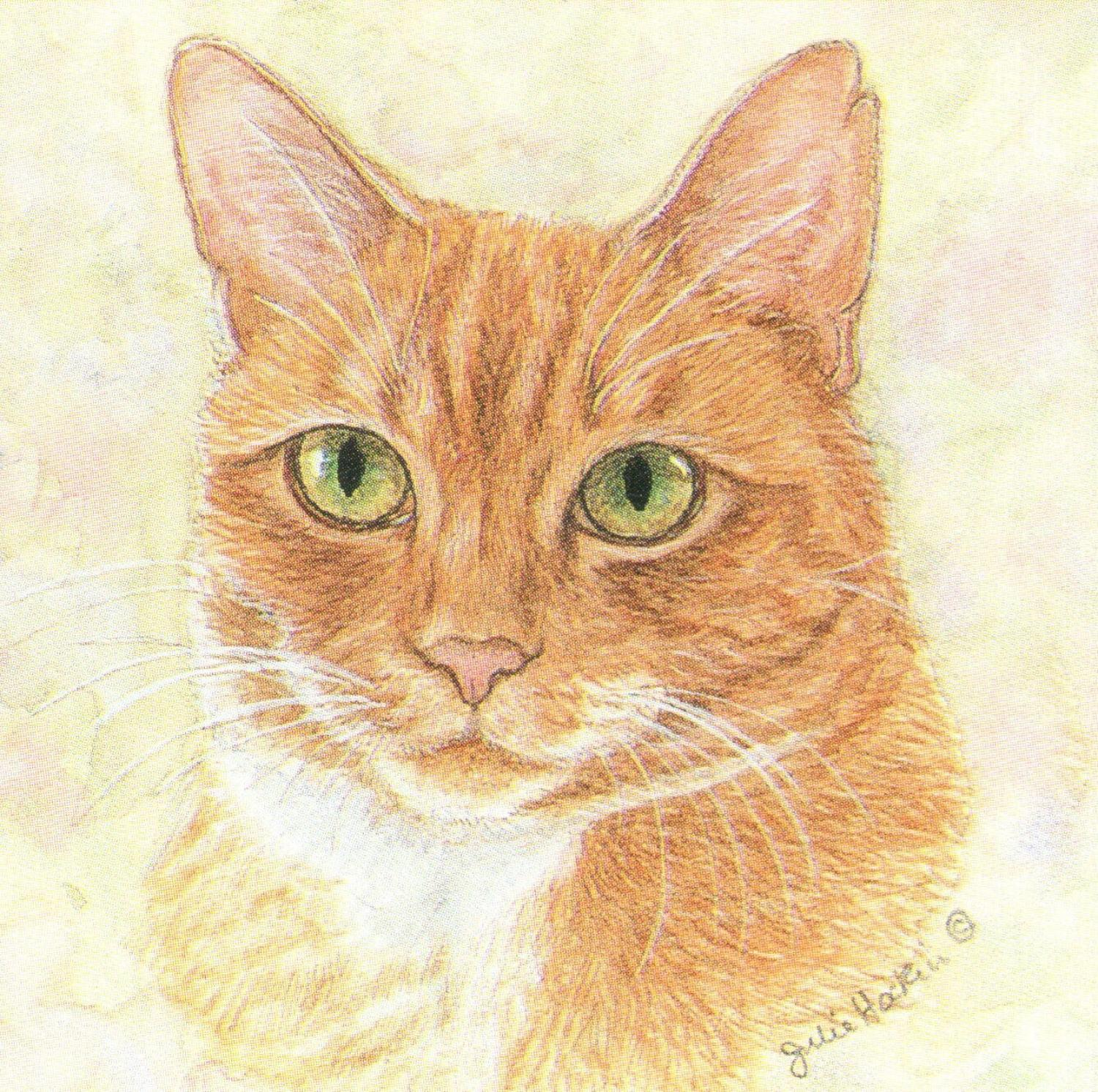 Square Fridge Magnet - Ginger Cat