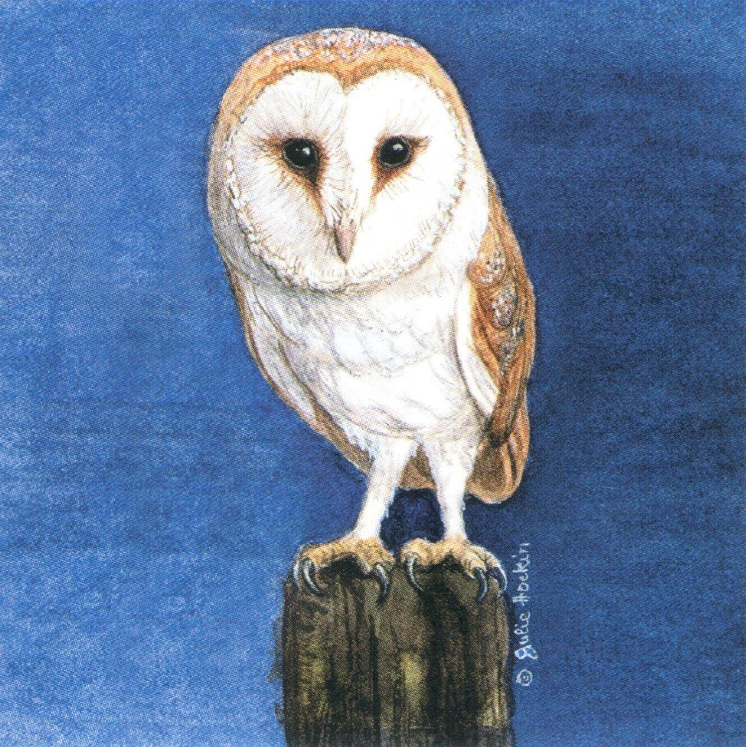 Square Fridge Magnet - Barn Owl