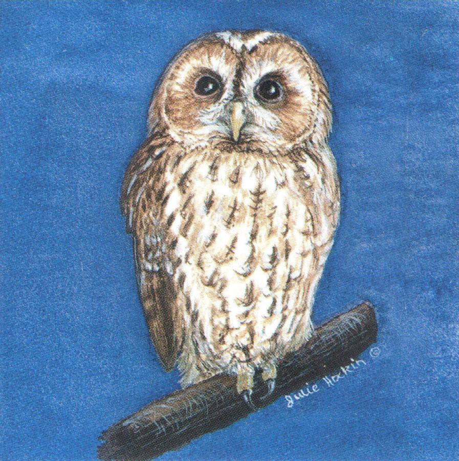 Square Fridge Magnet - Tawny Owl
