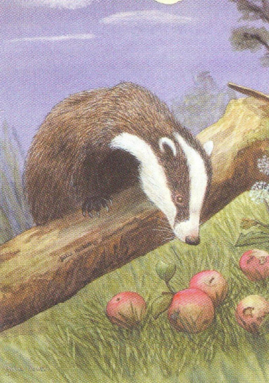 Rectangular Keyring - Badger