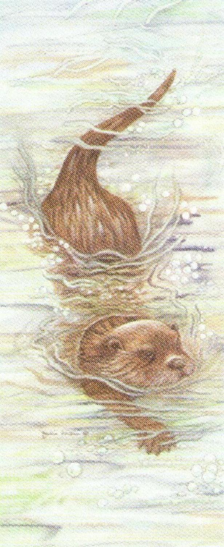 Mini Keyring - Otter