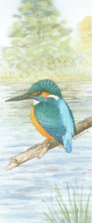 Mini Keyring - Kingfisher