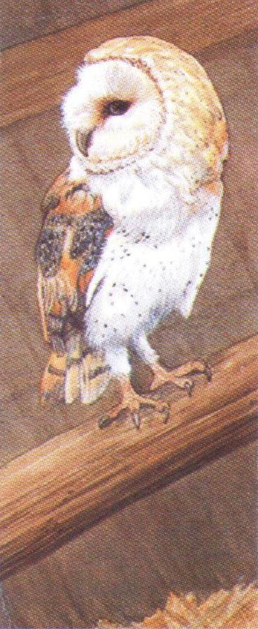 Mini Keyring - Barn Owl