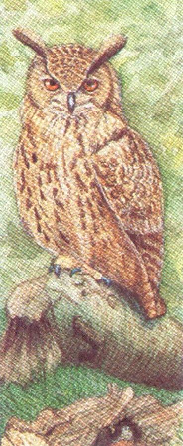 Mini Keyring - Eagle Owl