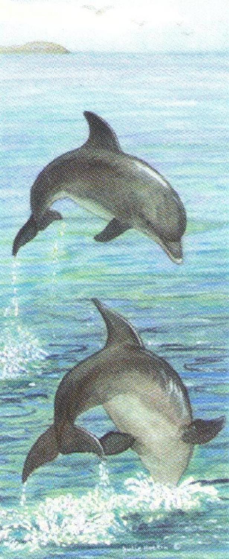 Mini Keyring - Dolphin