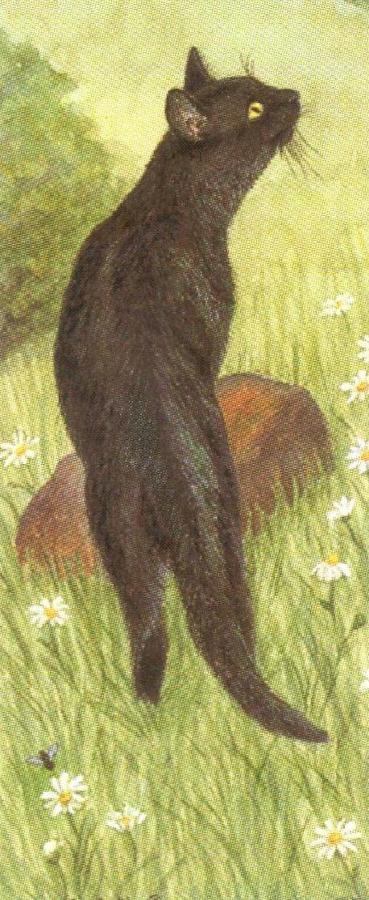 Mini Keyring - Black Cat