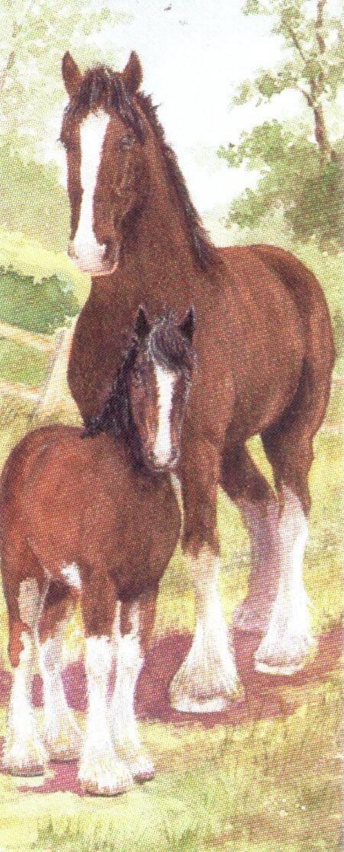 Mini Keyring - Shire Horse