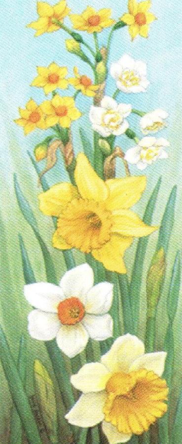 Mini Keyring - Daffodils
