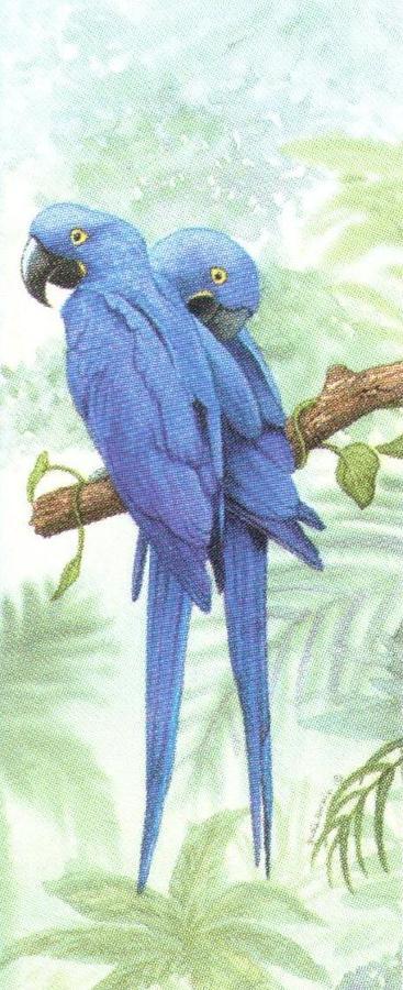 Mini Keyring - Hyacinth Macaw
