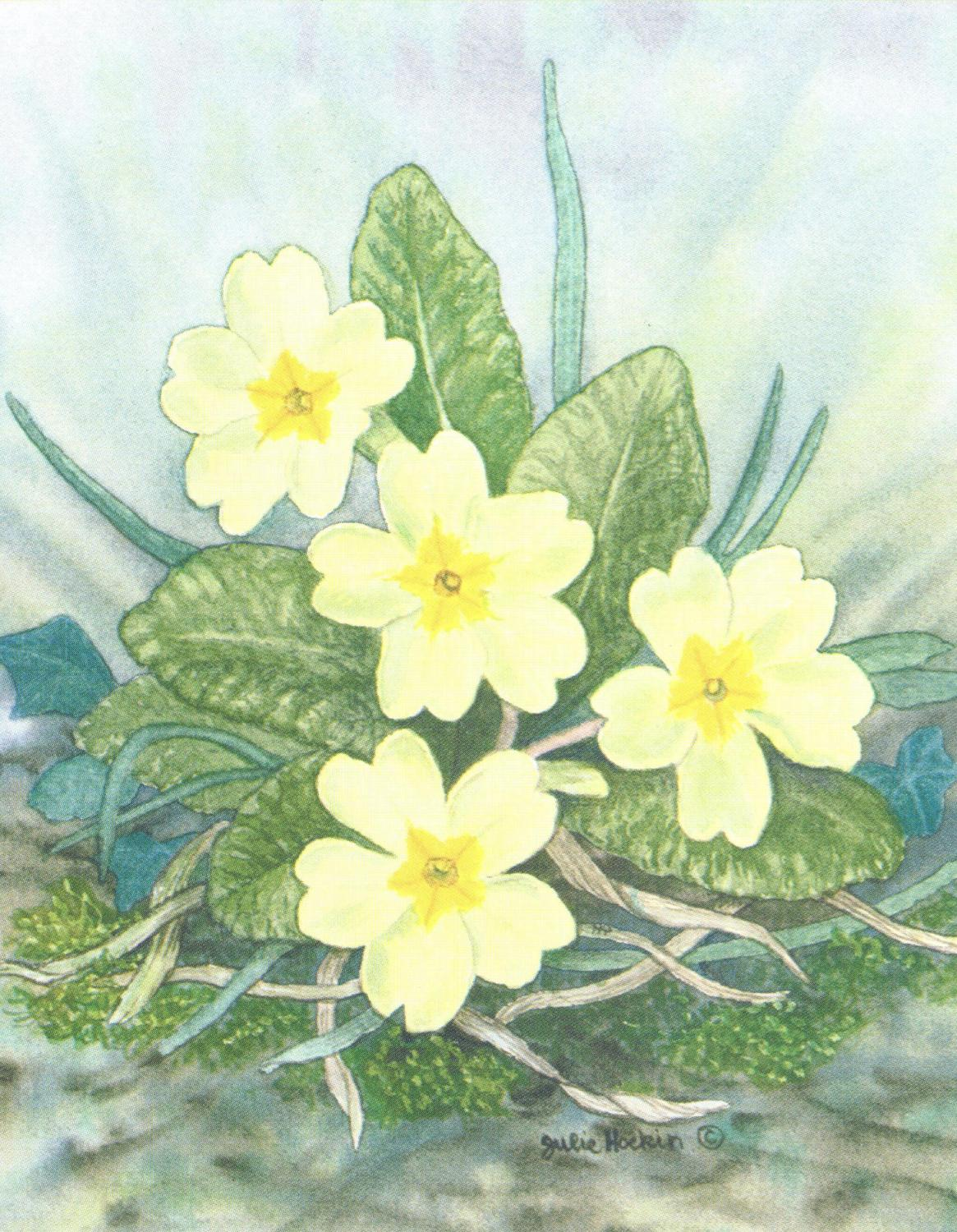 Pack of 5 Notecards - Primrose