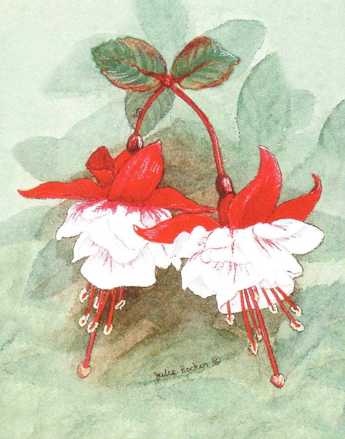 Pack of 5 Notecards - Fuchsia