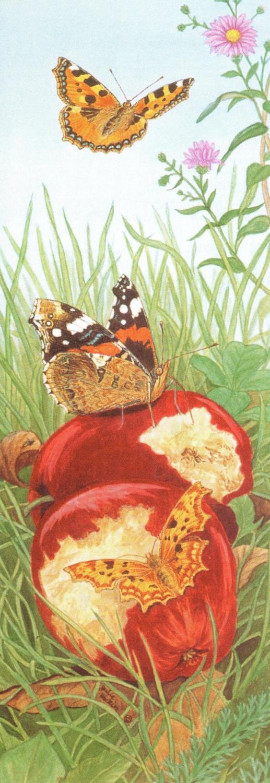Bookmark - Garden Butterflies