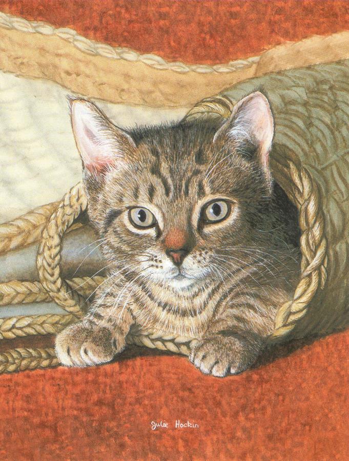 Pack of 5 Notecards - Basket of Mischief
