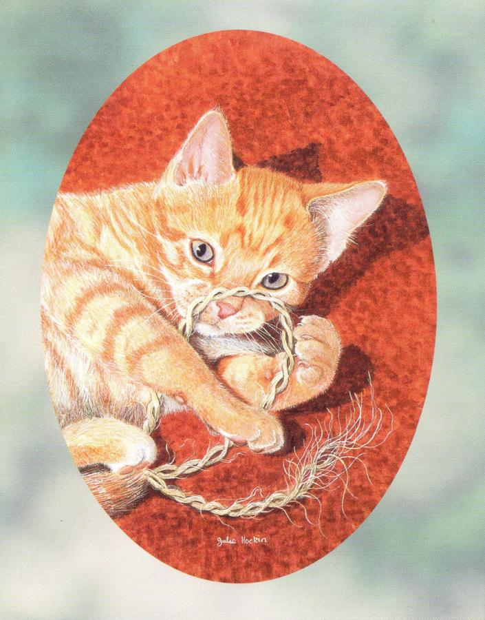 Pack of 5 Notecards - Cats Cradle