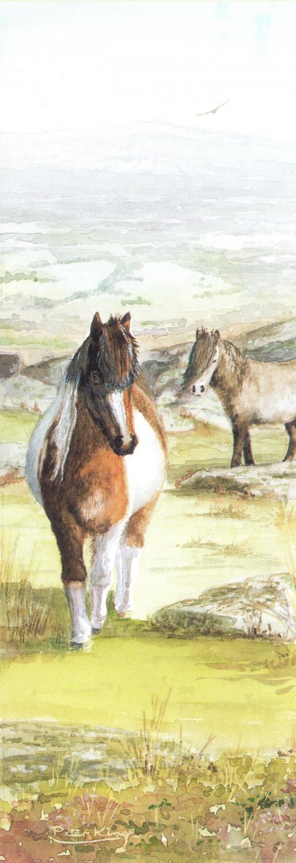 Bookmark - Dartmoor Pony