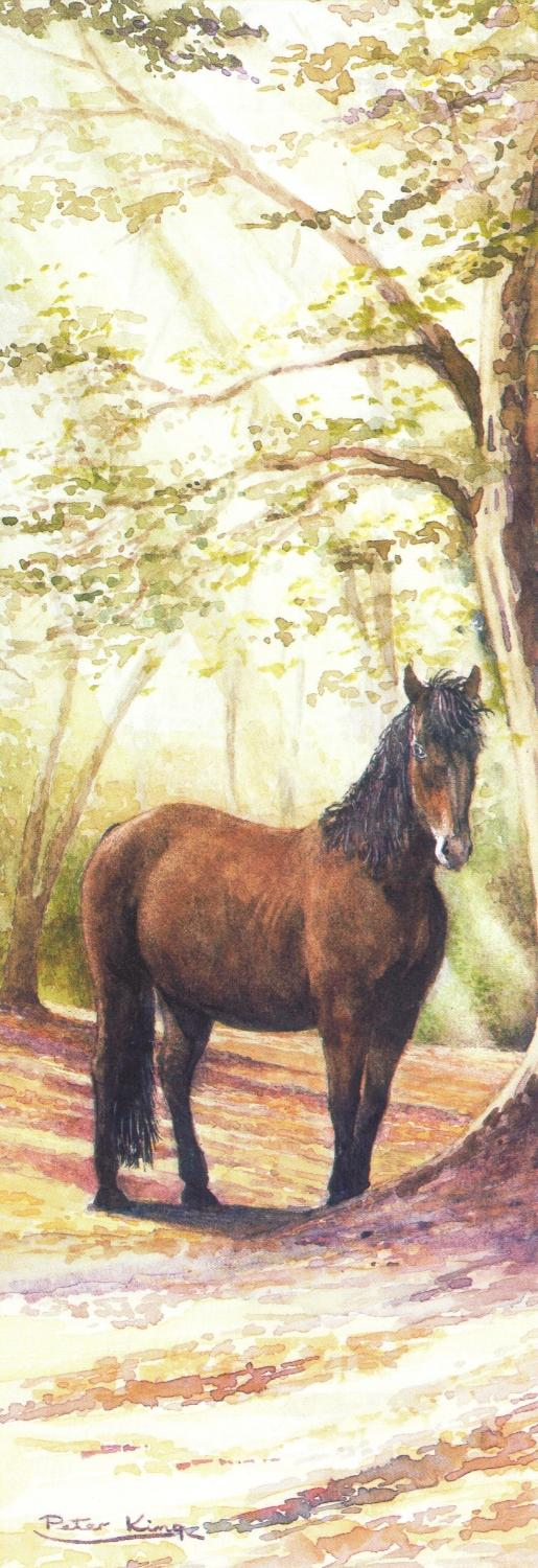 Bookmark - New Forest Pony