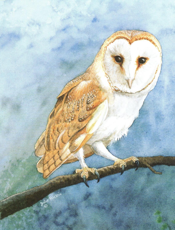 Pack of 5 Notecards - Barn Owl