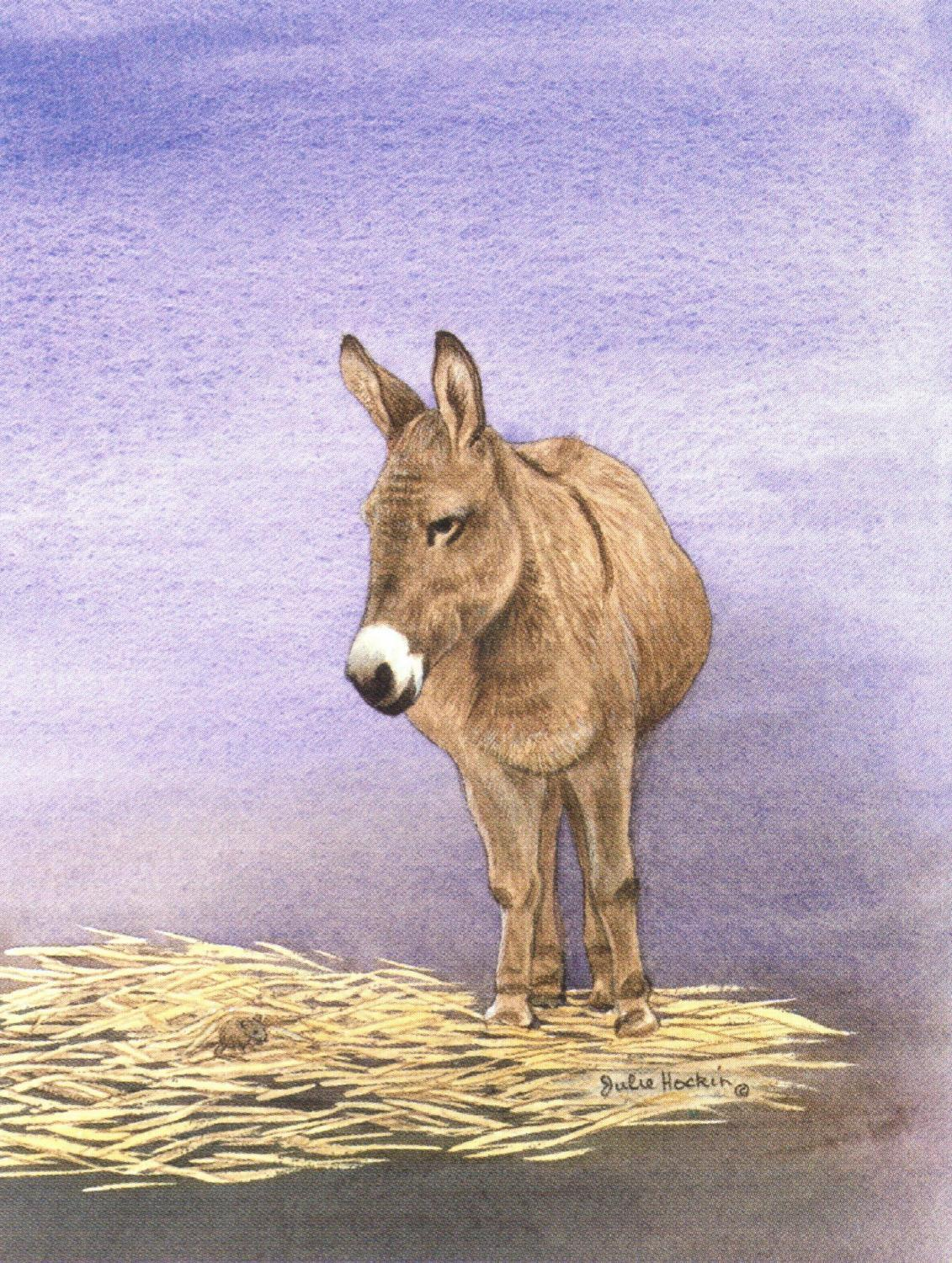 Pack of 5 Notecards - Donkey