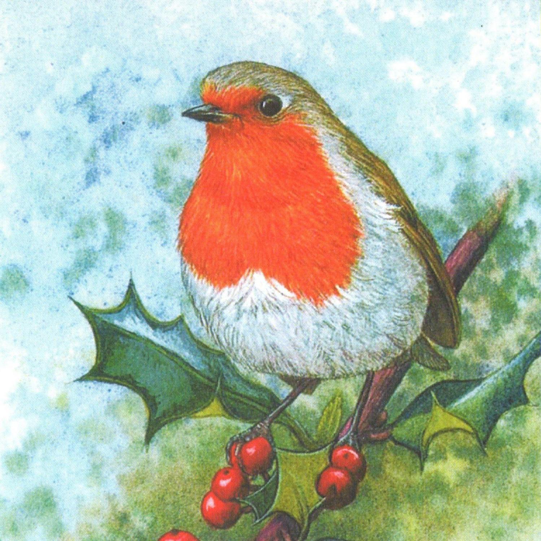 Acrylic Coaster - Christmas Robin