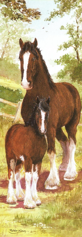 Bookmark - Shire Horse