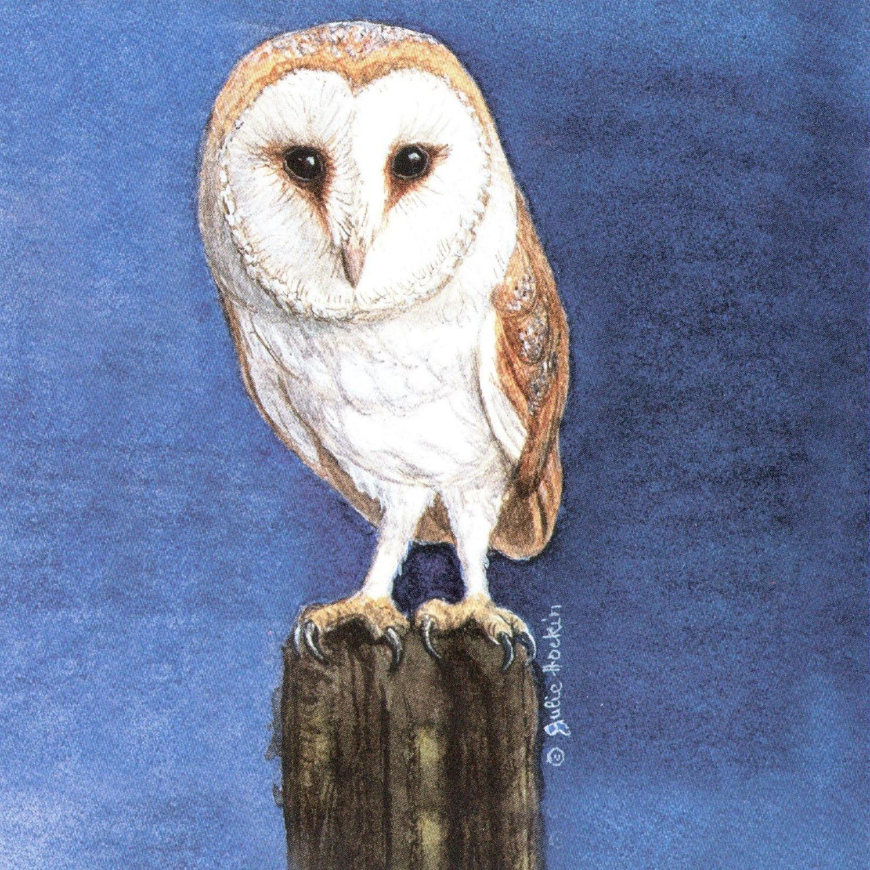 Acrylic Coaster - Barn Owl