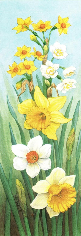 Bookmark - Daffodils