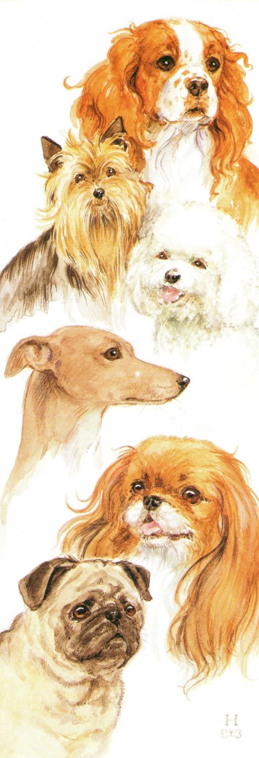 Bookmark - Toy Dogs