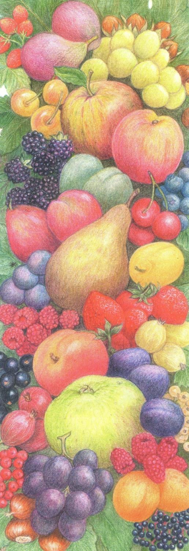 Bookmark - Kitchen Fruit