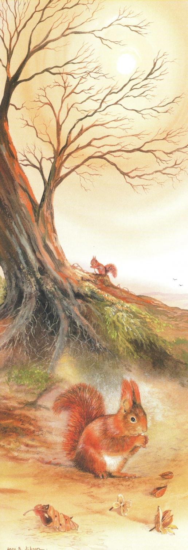 Bookmark - Red Squirrel