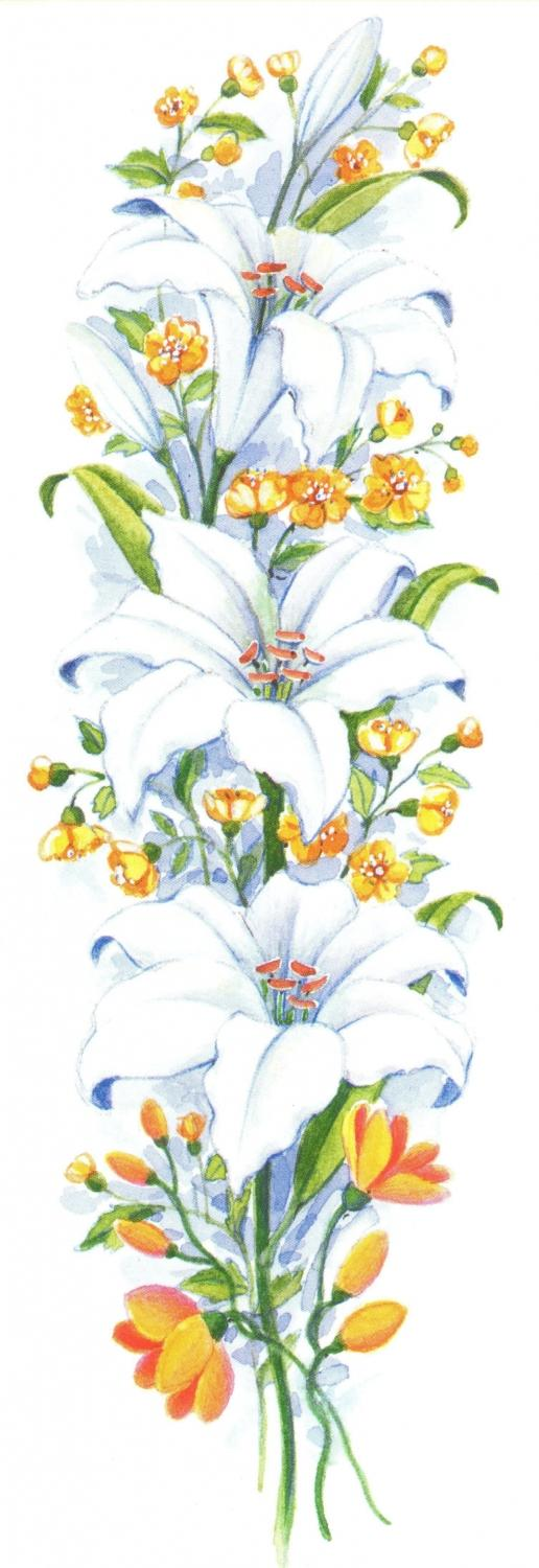 Bookmark - White Lily