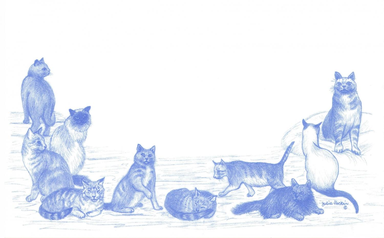 Eco Labels - Cats