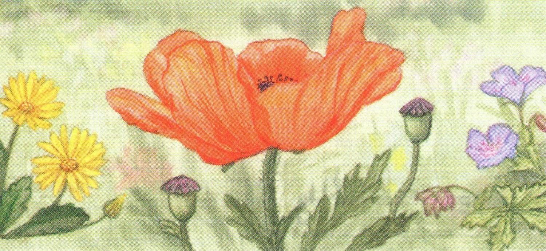Letter Opener - Poppy