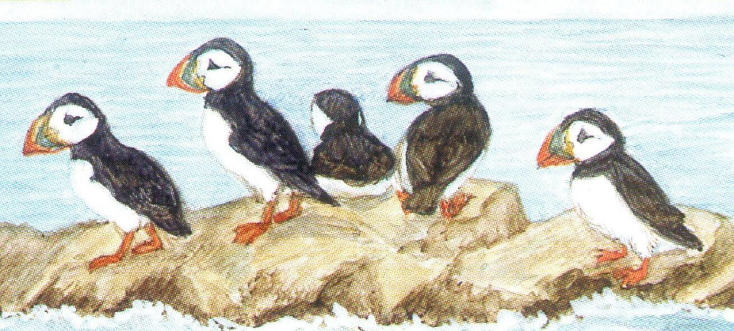 Letter Opener - Puffins