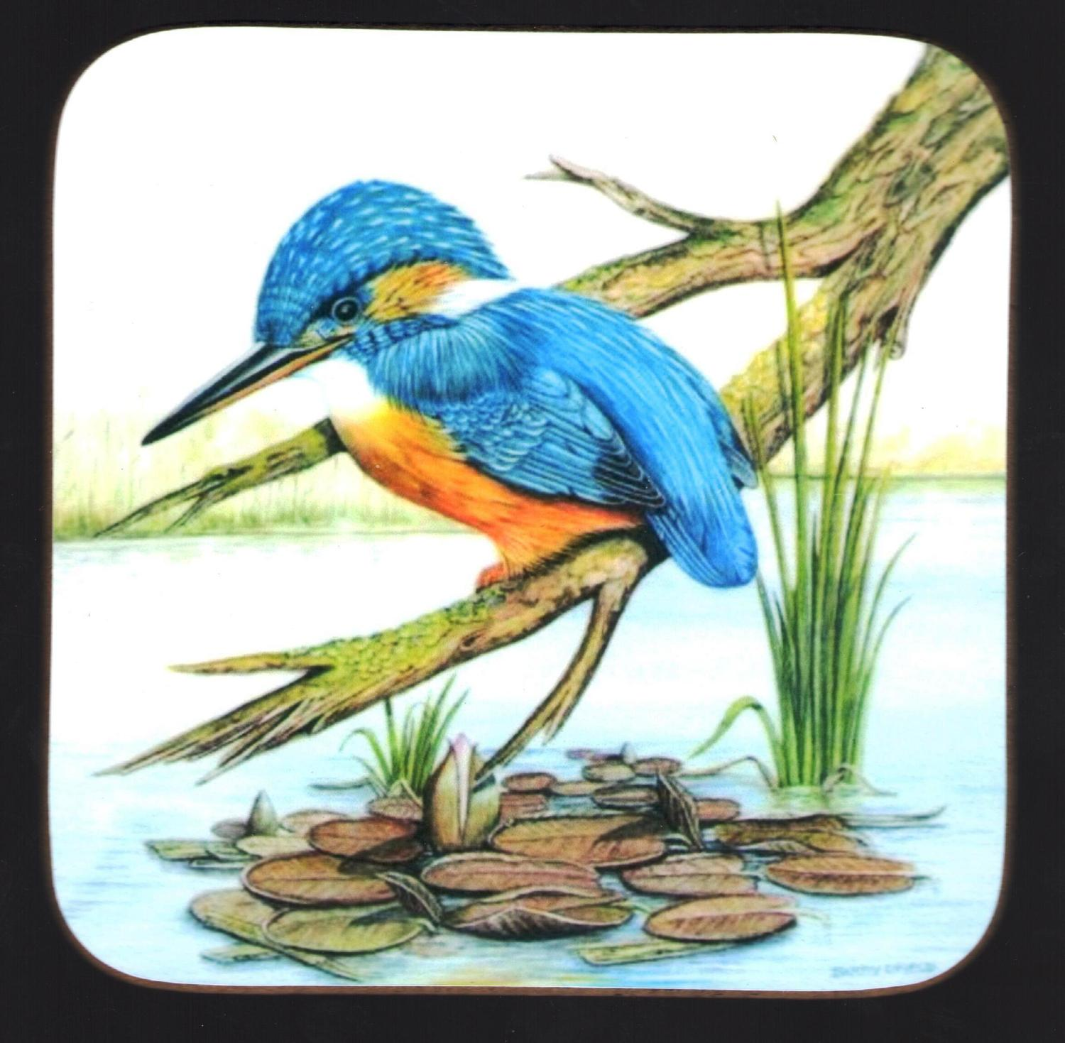 Coaster - Kingfisher