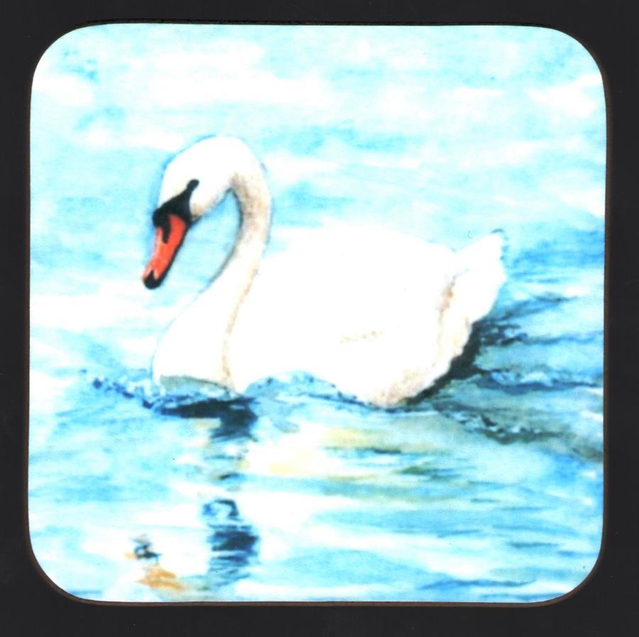Coaster - Swan