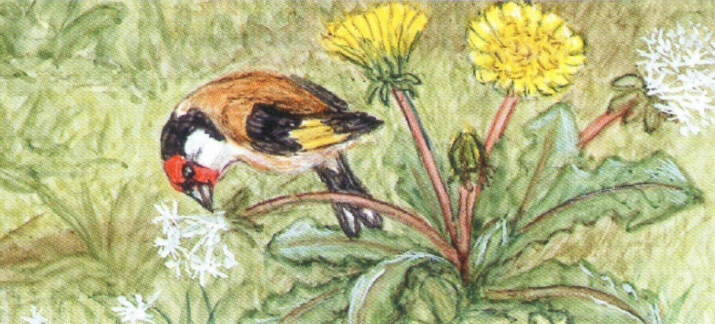 Letter Opener - Garden Birds