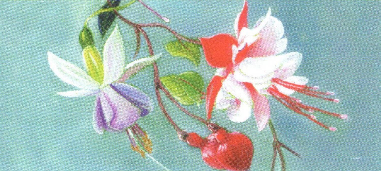Letter Opener - Fuchsia