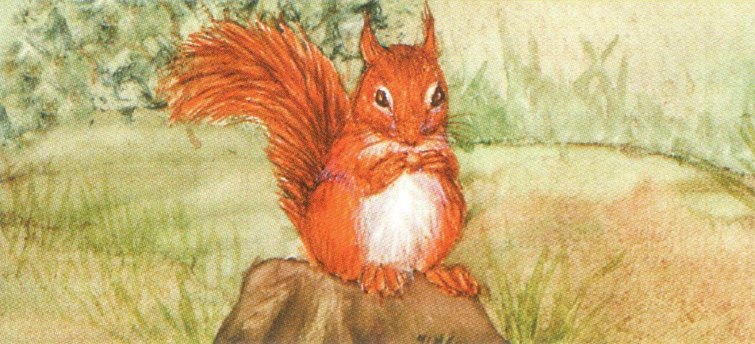 Letter Opener - Red Squirrel