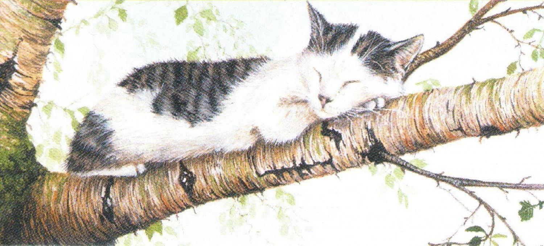 Letter Opener - Cat Nap