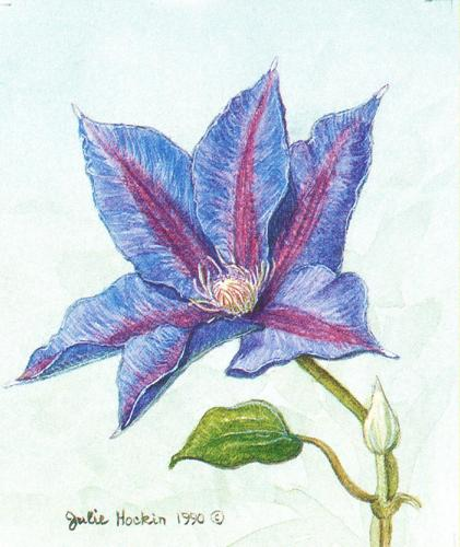 Folded Gift Tag Clematis