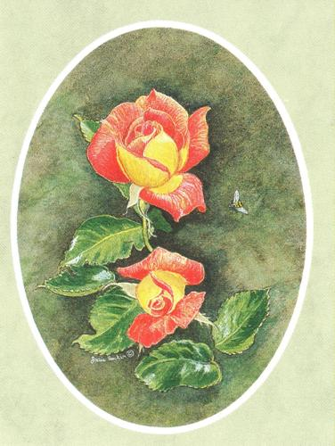 Folded Gift Tag Rose Picadilly