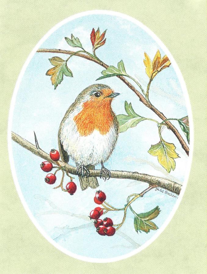 Folded Gift Tag Robin