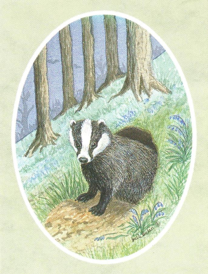 Folded Gift Tag Badger