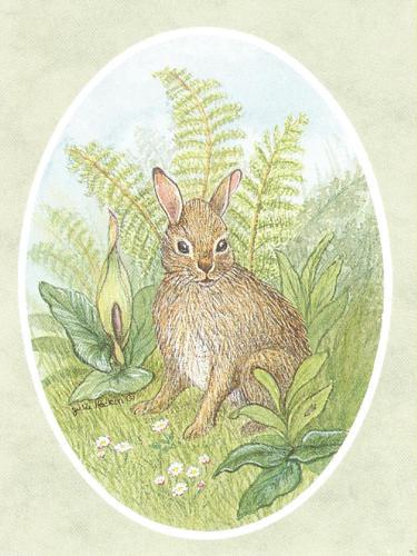 Folded Gift Tag Rabbit