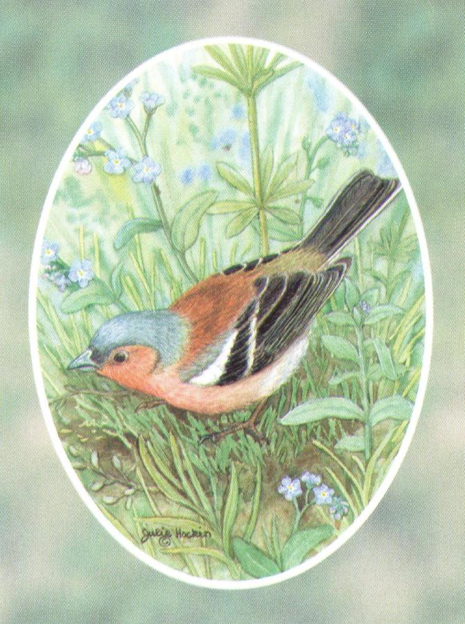 Folded Gift Tag Chaffinch