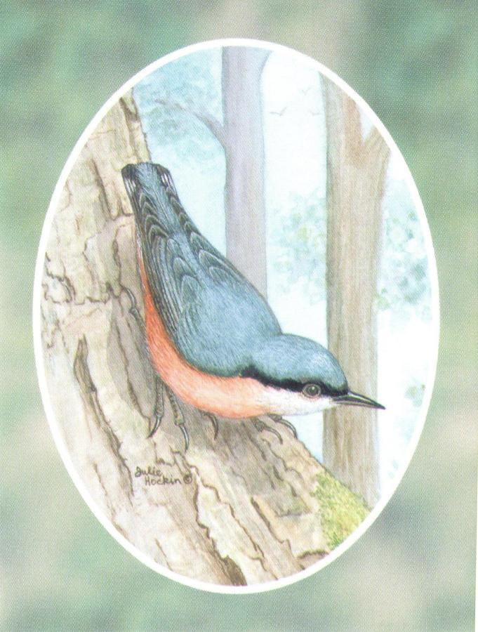 Folded Gift Tag Nuthatch